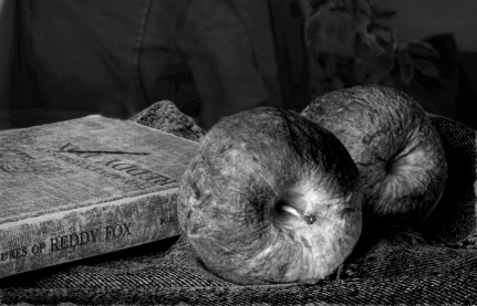 Forgotten Book & Apples