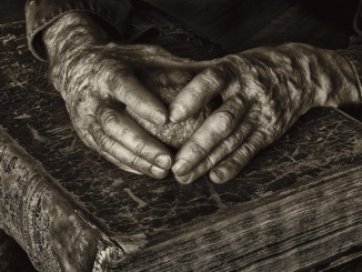 These Old Hands